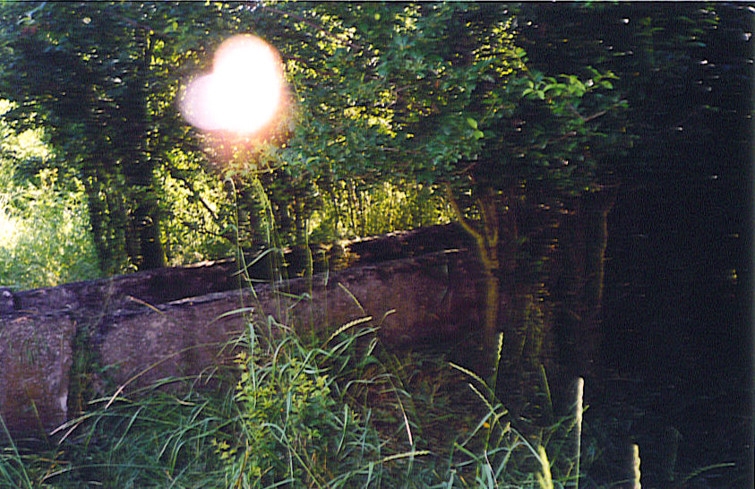 In the middle of the wilderness we find a watering trough... and a very extraordinary apparition<br>Click to enlarge