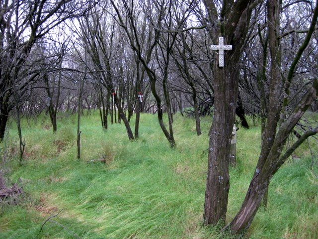 Molidorf Memorial Crosses - May 13, 2009<br>Click to enlarge